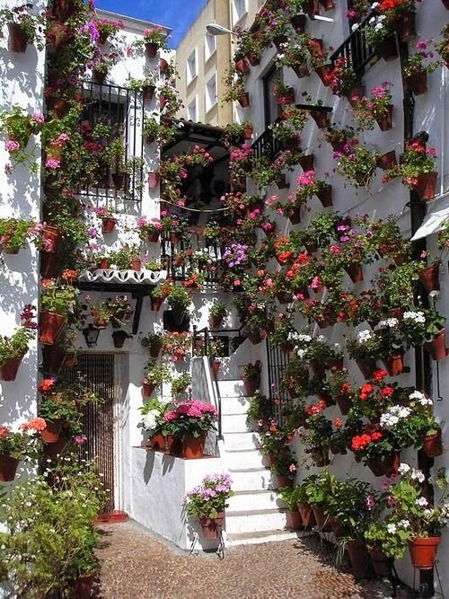 Cordoba, Andalusia, Spain~ This looks so quaint and inviting, it makes me want to live there.