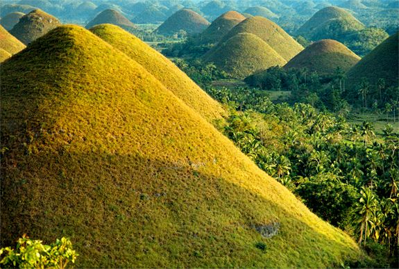 Chocolate Hills, Bohol Island, Philippines... these hills turn brown in the summer... like chocolate kisses in a bed of grass. It's more fun in the Philippines!