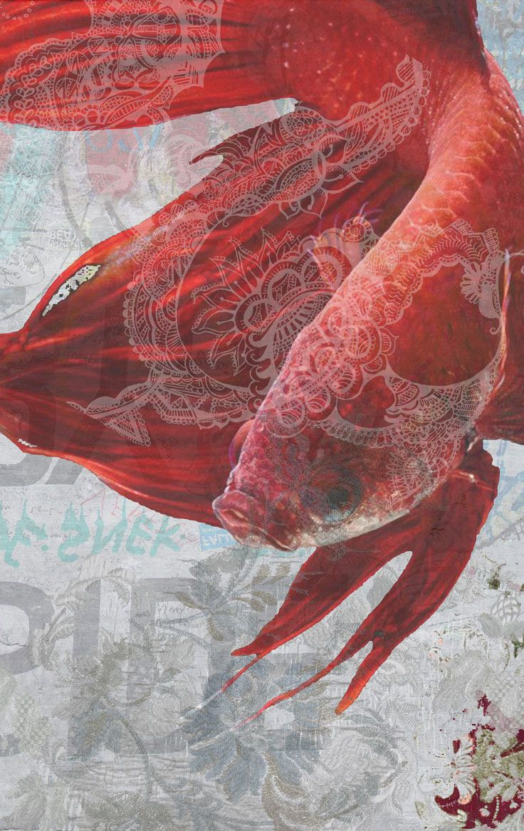 Carta da parati / Wall paper: AIR AND WATER - Water Tecnografica #ItalianWallcoverings #cartadaparati #wallpaper #wallpapers #rossa #red #arredamentodinterni #interiordesign #design #moderna #soggiorno #bagno #tropicale #natura #animali #ideas #modern #livingroom #nature #fish