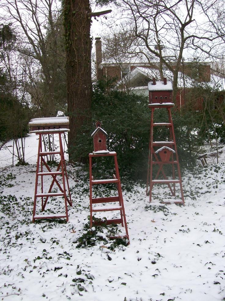 winter 2012 garden of len barb rosen