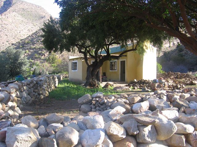 Weltevrede Guest Farm - Prince Albert, Karoo - Guest House Accommodation and Fig Farm
