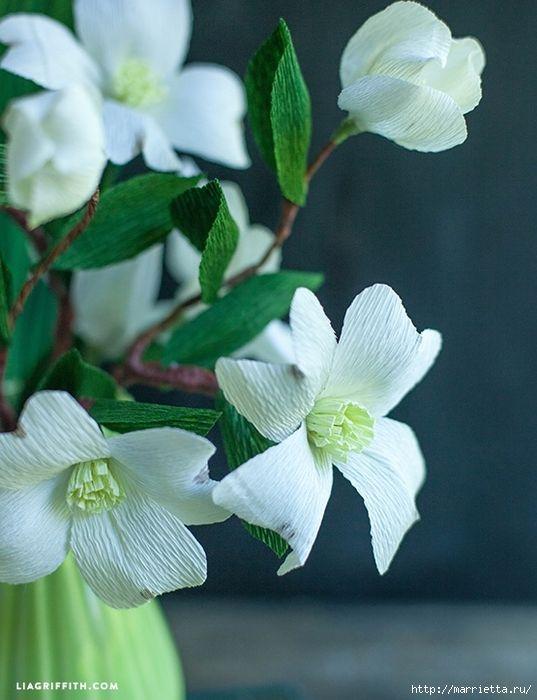 Dogwood flores de papel crepom.  Templates para imprimir (2) (537x700, 247Kb)