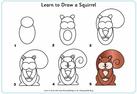 How to draw a squirrel by frannyupnorth