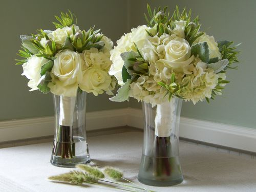 Bridesmaids bouquets with Polar Star roses, hydrangea, dusty miller and Leucadendron 'Pisa'