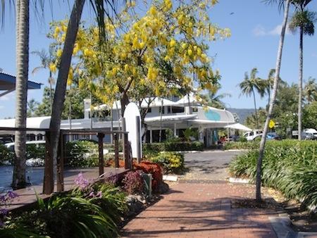 Port Douglas street