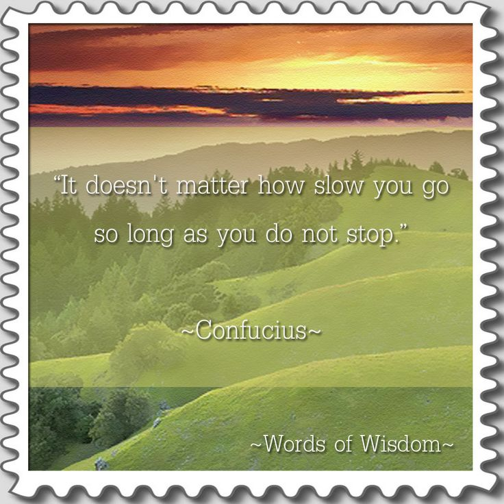 """It Doesn't Matter How Slow You Go So Long As You Do Not"