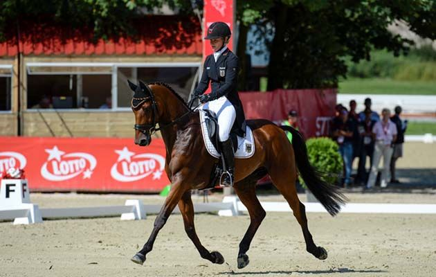 Germany off to positive start at Europeans; Oliver Townend sixth for Britain http://trib.al/n1sqfto
