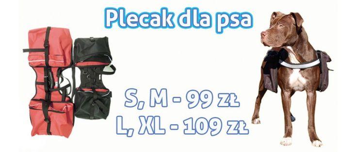 Dostępny w naszym sklepie: http://sklep.codlapsa.pl/sport-i-szkolenie/plecak-dla-psa  Funkcjonalny i estetycznie wykonany plecak dla psa. Sakwy plecaka mocowane są na rzepy i klamry - dzięki temu nie odpinają się samoistnie pod wypływem obciążenia. Po ich zdjęciu zostają bardzo praktyczne szelki spacerowe z rączką. Odpowiednio używany plecak pomaga rozwijać muskulaturę psa i wpływa na poprawę kondycji fizycznej.