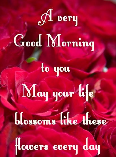 Good Morning Beautiful Cousin : Good morning wishes quotes
