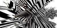 Motivy - zebra