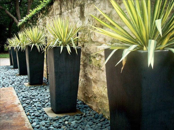 Top 25 best Cheap landscaping ideas ideas on Pinterest Cheap