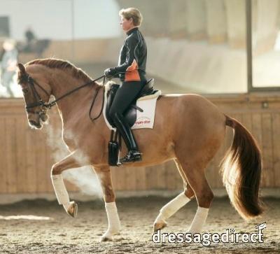 Ulla and Herzruf´s Erbe - a 10 piaffe