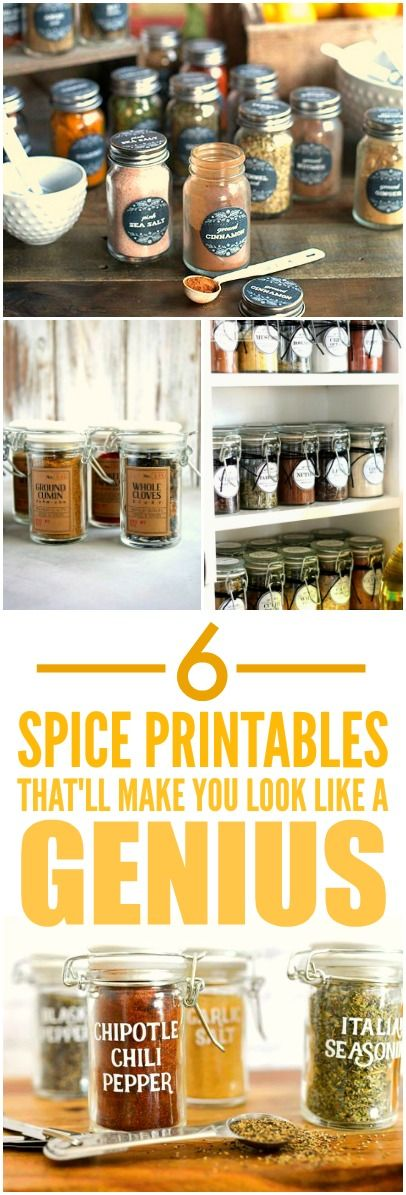 These 6 Free Spice Printables are THE BEST! I'm so happy I found these AMAZING labels! Now I can organized and make you spice cupboard look cute! I'm SO pinning for later!