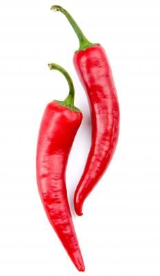 Capsaicin, the compound that gives chili peppers their heat, blocks the activity of substance P.