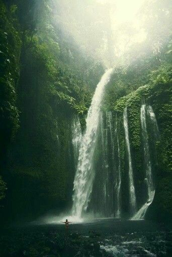 Khao Sok National Park http://www.actuweek.com/go/amazon-thailande.php