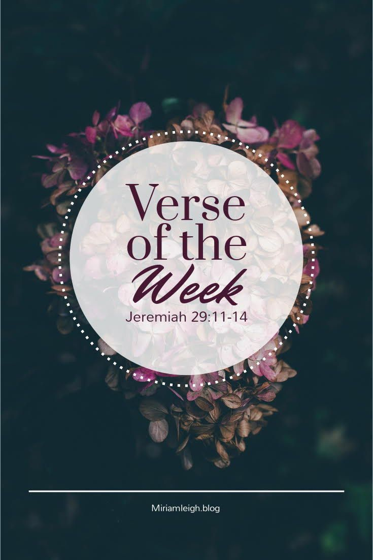 My bible study of Jeremiah 29:11-14 with pictures and details!