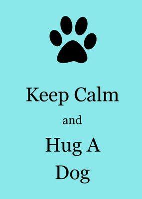 hug a dog......
