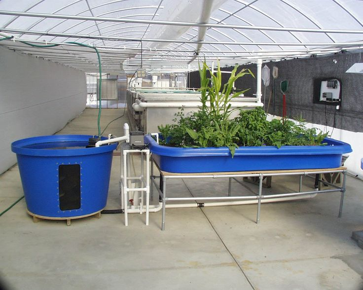 Internet of Farming: Arduino-based, backyard aquaponics