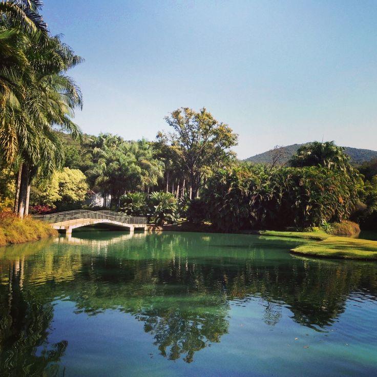 Belo Horizonte - inhotim (Grande Belo Horizonte) arte e botânica