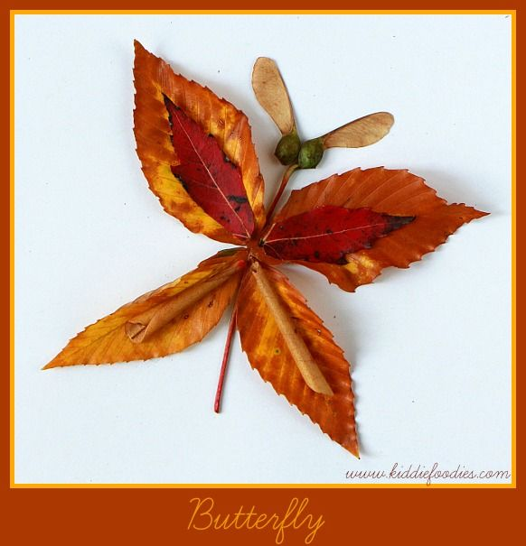 Fall crafts - how to create pictured with leaves - Butterfly