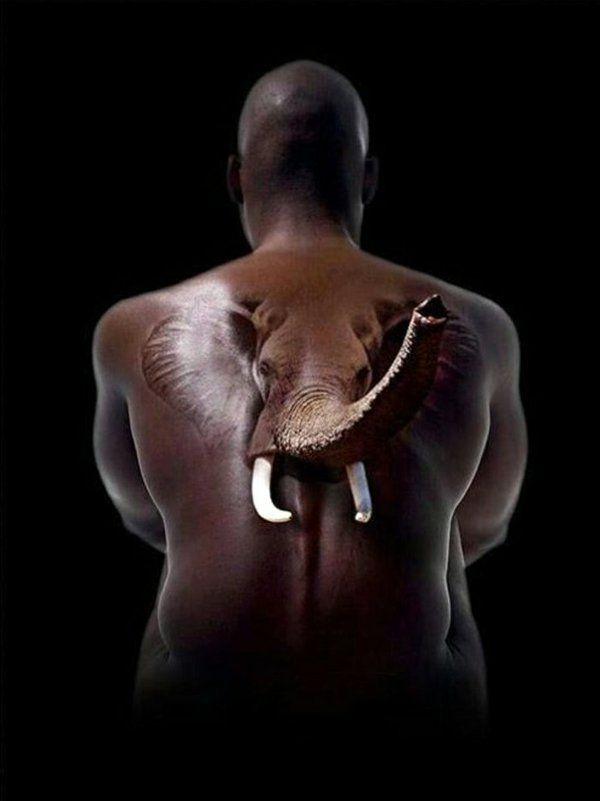 coole tattoos 3d elefant muster rücken