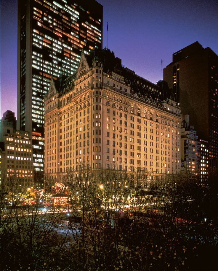 The Plaza: Never skip on an opportunity for tea at the Plaza Hotel.  Always a classic.