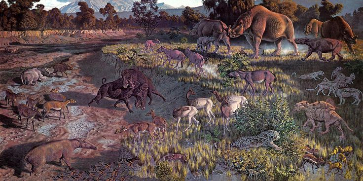 Early Oligocene (33.0-28.4 Mya) Species Key, Mural in Smithsonian Museum of Natural History by Jay Matternes