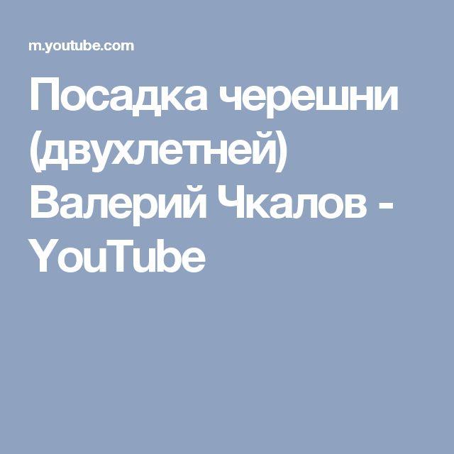 Посадка черешни (двухлетней) Валерий Чкалов - YouTube