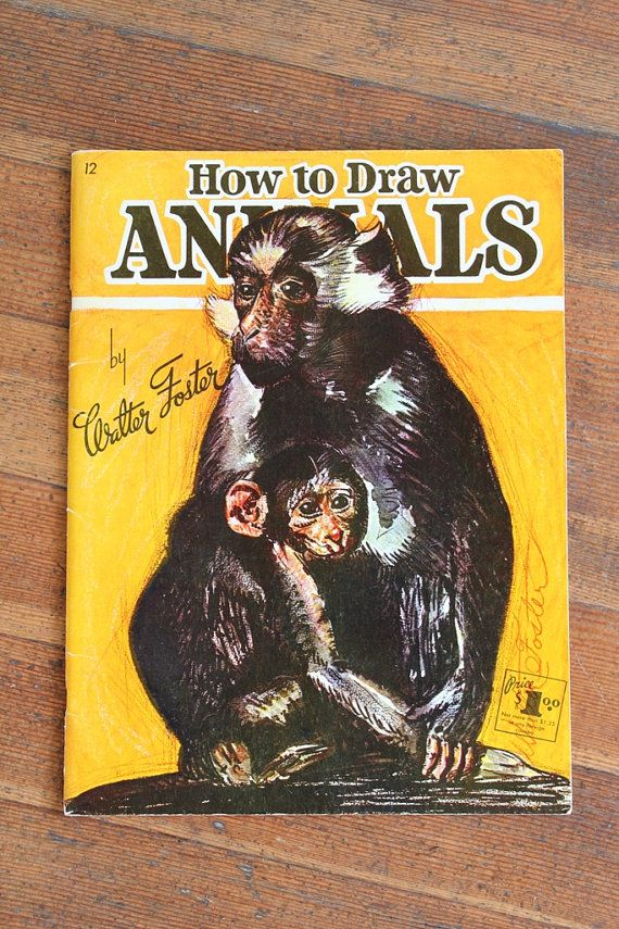 Vintage Drawing Book How To Draw Animals by Walter Foster This how to series really helped me when I was young, as no one knew how to train an artist. It gives you good basics and direction in developing a critical eye for form.