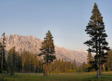California's Sequoia & Kings Canyon National Park - An Overview: Lower Vidette Meadow in Kings Canyon National Park, California