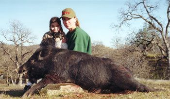 Northern California Wild Pig Hunts- Guided California Wild Pig Hunting- Northern California Wild Boar Hunts