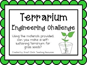 Grass Seed Terrariums: Engineering Challenge Project ~ Great STEM Activity!  Can you make a self-sustaining terrarium for grass seeds?  $