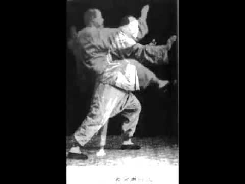 Yang Style Tai Chi 88 Form - 88 Yang Cheng Fu - YouTube