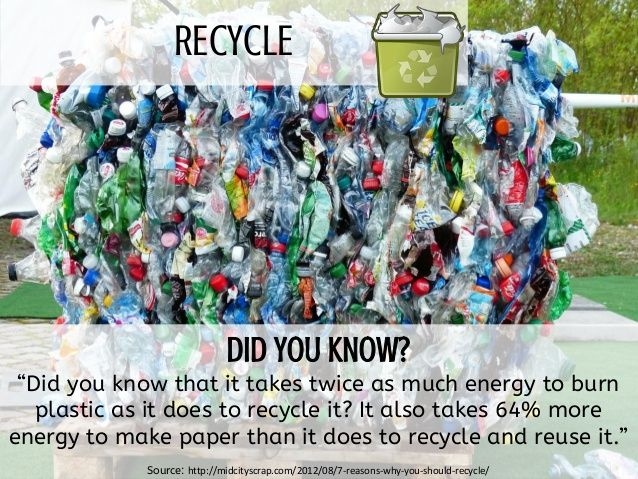 Do you recycle?