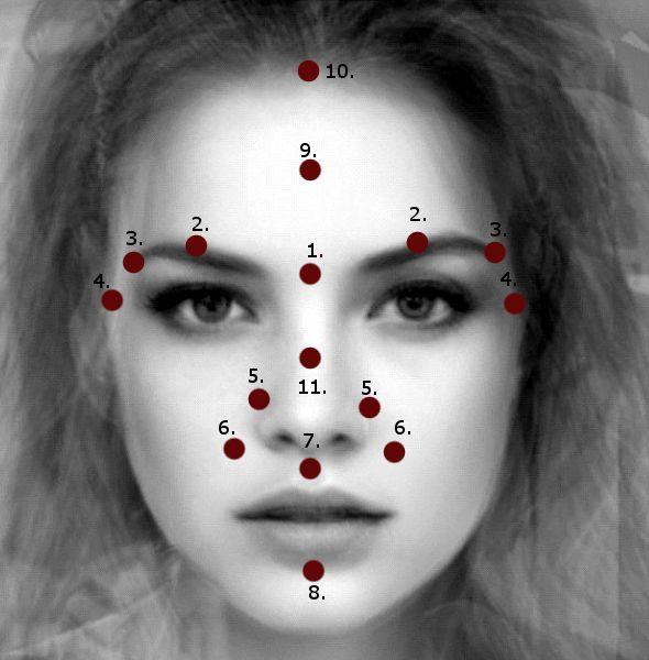Facial points (marmas) Se define como punto marma, el lugar anatómico donde músculos, venas, ligamentos, huesos y articulaciones se encuentran, Estos puntos son los asientos de la vida.