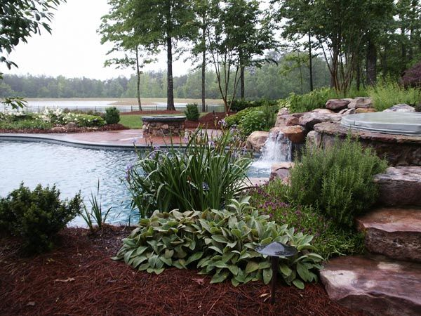 1000 Ideas About Landscaping Around Pool On Pinterest