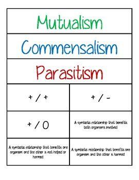 commensalistic relationship definition for kids