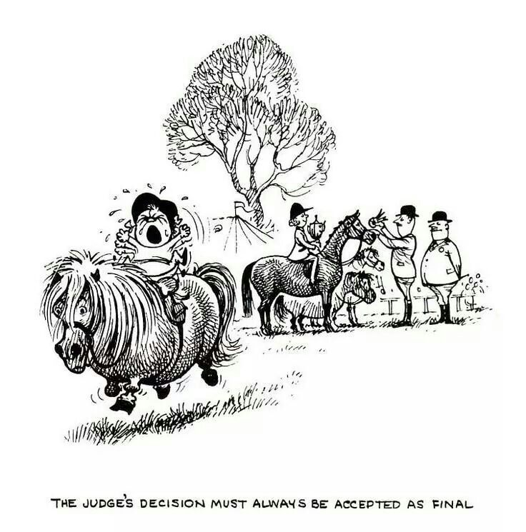 17 best images about thelwell ponies on pinterest