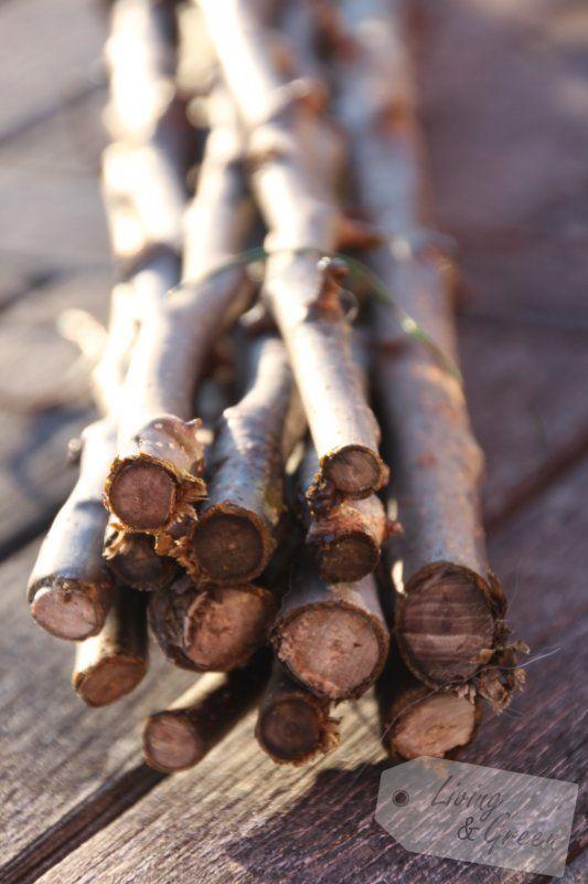Vom Gartenschnitt zur Frühjahrsdeko – Deko aus Baumschnitt