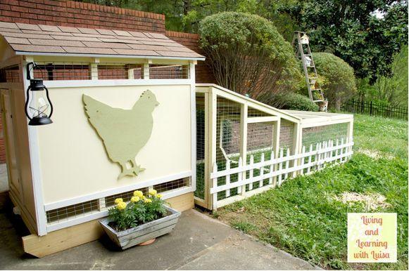 Love that big chicken! Is that a Phathead Hen? LOL #HenHouse www.FreeHenHousePlans.net