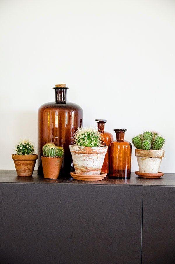 Urban jungle cactussen in aardewerken potten met medicijnflessen.