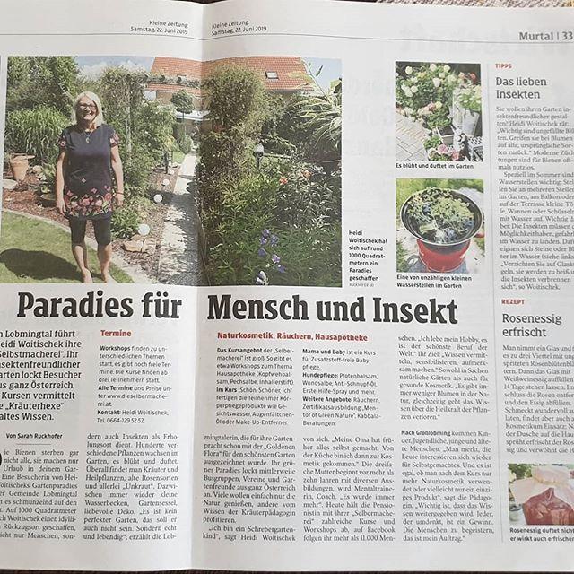 New The 10 Best Garden Ideas Today With Pictures Eine Schone Wertschatzung Zeitungsbericht Kleinezeitung Instagardeners Mygarden Myhome Organ Words