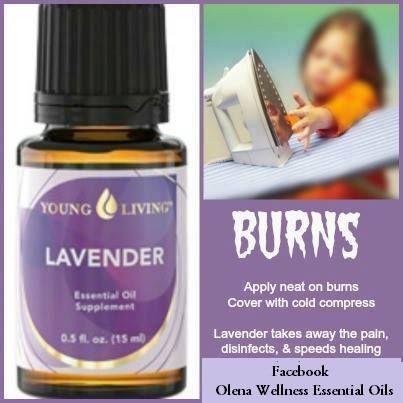 Lavender For Burns Essential Oils Pinterest Lavender