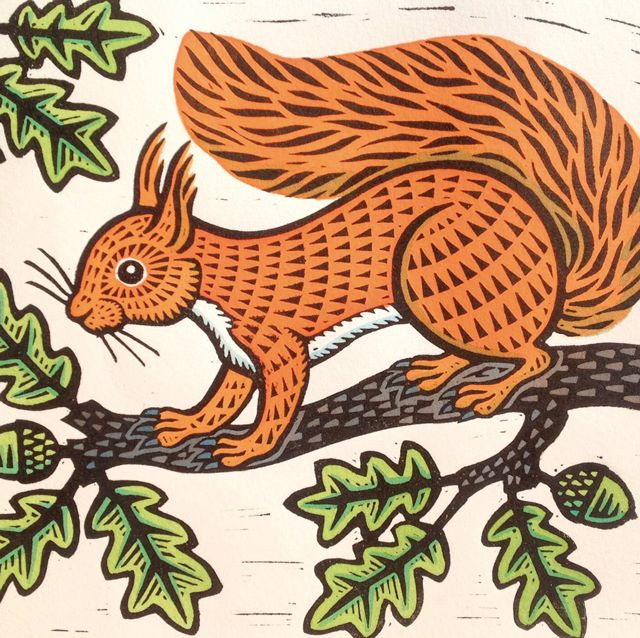 'Red Squirrel' By Printmaker Gerard Hobson. Blank Art cards By Green Pebble. www.greenpebble.co.uk