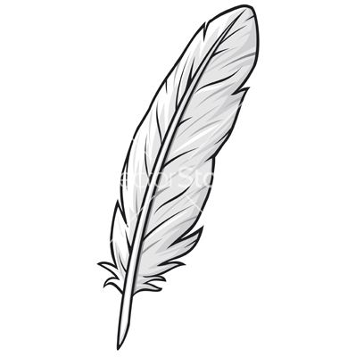 Feather vector $