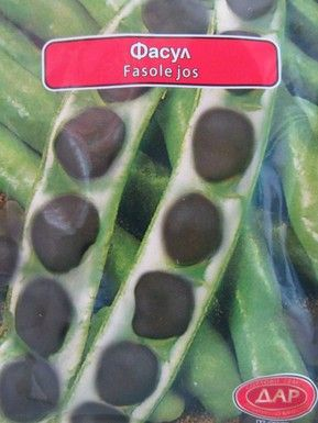 Fasole Neagra Pastai Stara Zagora – 100 gr – Seminte Fasole Neagra Pastai Soi Timpuriu Italia 1