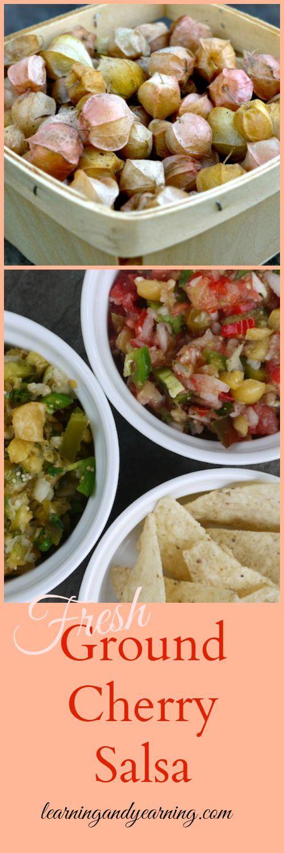 Fresh Ground Cherry Salsa Food Storage Recipesveggie