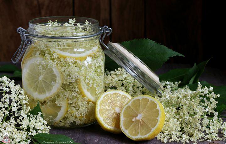Ma lo sapevate che lo sciroppo di sambuco ricetta semplicissima è ottenuto dai suoi fiori?Diluito nell'acqua è un ottimo dissetante,fresco e gustoso.