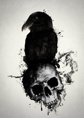 raven skull death viking norse mythology pagan hugin munin huginn muninn bird prey illustration spatter crow oden odin
