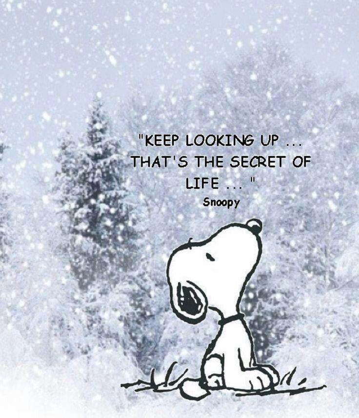 Great advice Snoopy!!